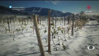 Nieva en Coahuila después de 20 años