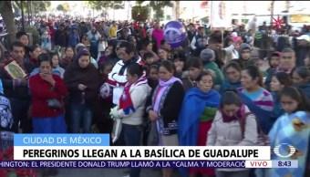 Llegan los peregrinos a la Basílica de Guadalupe