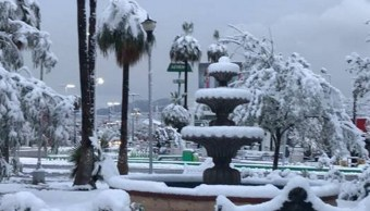 segob declara emergencia helada severa cinco municipios coahuila