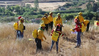 Operativo contra incendios forestales de Oaxaca. (Twitter @CONAFOR)