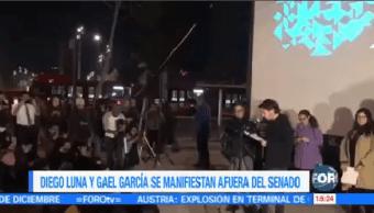 Gael García Diego Luna Manifiestan Afuera Senado