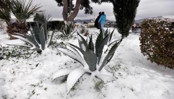 Sierra de Coahuila tendrá nevadas para las próximas horas