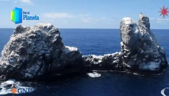 Islote de Roca Partida concentra la diversidad marina del Archipiélago de Revillagigedo