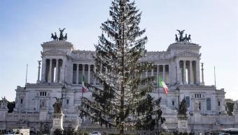 Muere el gran abeto de Navidad de Roma