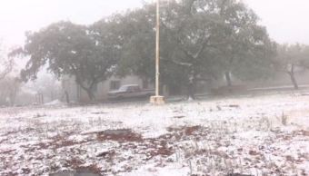 Frente frío provoca nevada en ejido Alta Cumbre, Tamaulipas