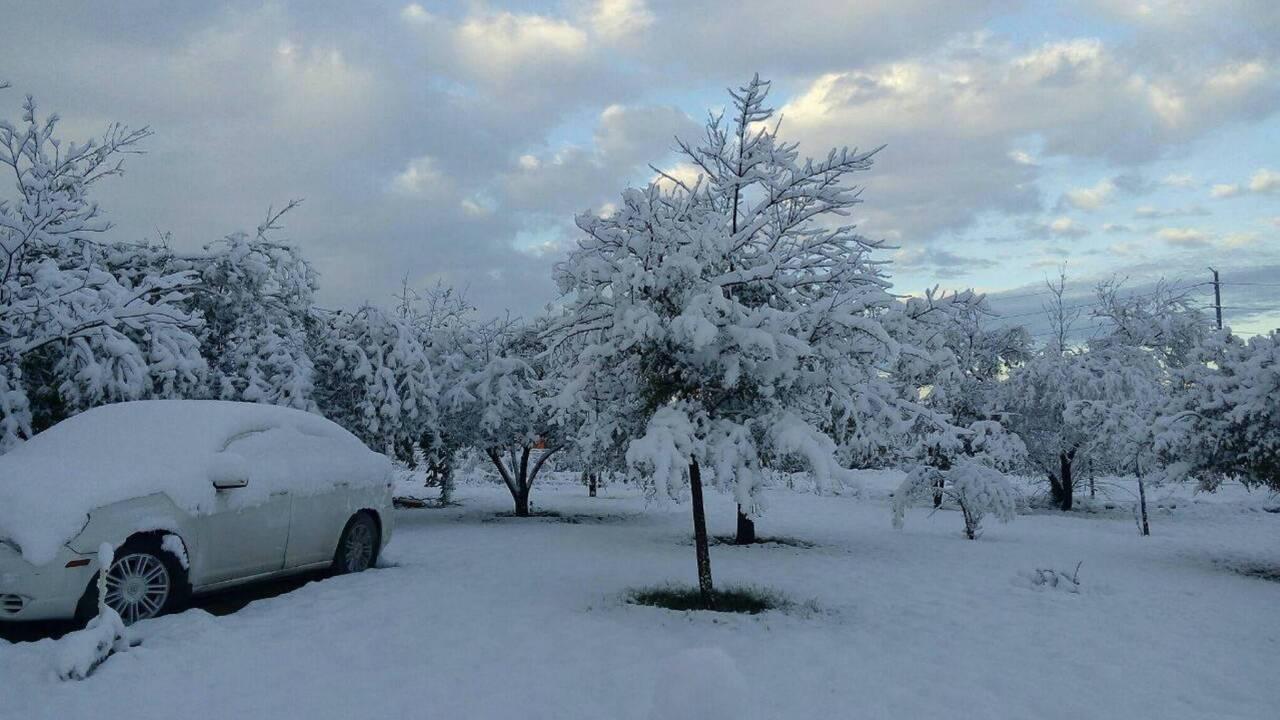 Cinco personas mueren en México por frío y vientos