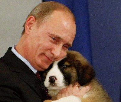 Vladimir Putin endurece castigo por maltrato animal