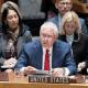 Rex Tillerson habla ante el Consejo de Seguridad de la ONU