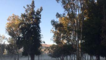 Tormenta invernal provoca temperaturas bajo cero en San Luis Potosí