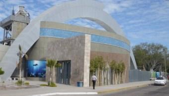 Sancionan e inhabilitan a dos exalcaldes de Mazatlán por daños al erario