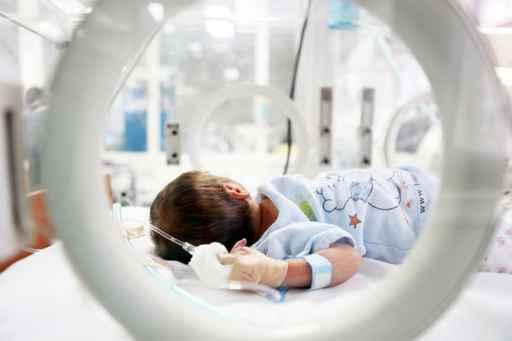 prueba adn revela bebes no fueron intercambiados hospital sonora