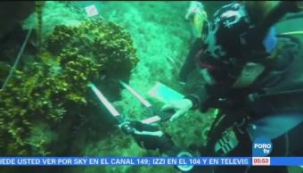 Especialistas exhortan a crear planes para rescatar arrecifes en México