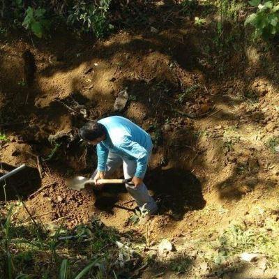 Hallan al menos 29 cuerpos en fosas clandestinas en Nayarit
