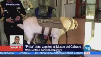 'Frida' dona sus botas de rescate al Museo del Calzado