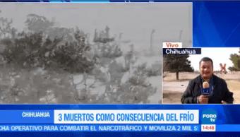 Mueren 3 Personas Consecuencia Frío Chihuahua