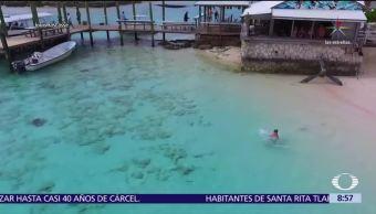 Niño logra escapar de cuatro tiburones que lo acechaban en las Bahamas