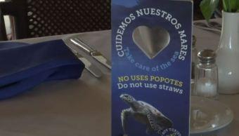 Lanzan iniciativa en Huatulco para evitar uso de popotes en hoteles y restaurantes