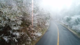 sierra de santiago se cubre de blanco por intenso frío