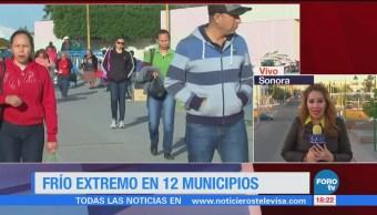 Sonora Registra Frío Extremo 12 Municipios Estado
