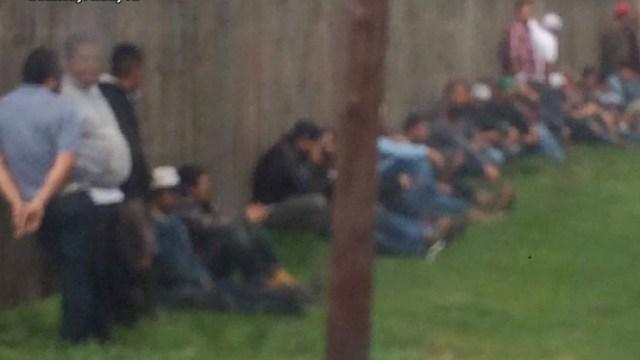 Arrestan 50 personas y decomisan 165 gallos palenque ilegal Texas