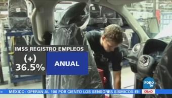 Creación de empleos en enero de 2018 aumenta 36.5 por ciento: IMSS