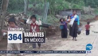 Riesgo Lenguas Maternas Chiapas