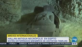 Localizan necrópolis con al menos 40 sarcófagos en EgiptoLocalizan necrópolis con al menos 40 sarcófagos en Egipto