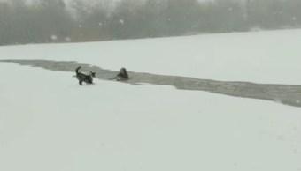 Perro-Husky-Perrito-Husky-Lago-congelado-Lago-Helado