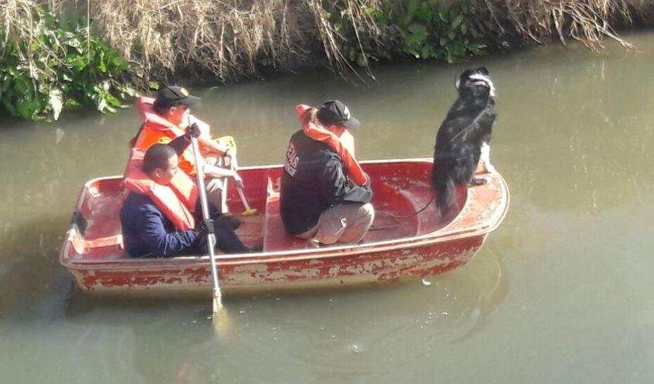 Reanudan búsqueda de James; drenarán canal