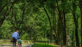 inmobiliarias amenazan al bosque de chapultepec