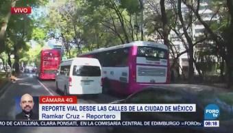 Automóviles y camiones invaden carril del Metrobús en Paseo de la Reforma, CDMX