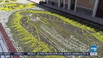 Colocan tapete monumental en Atlixco, Puebla