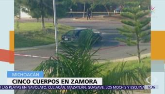 Encuentran 5 cadáveres en auto abandonado en Michoacán