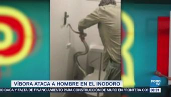 Extra Extra: Víbora ataca a hombre en el inodoro