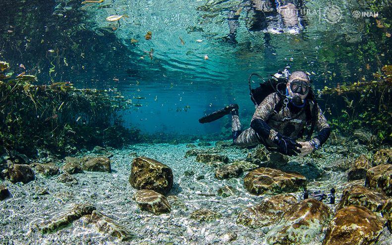 Dan a conocer hallazgos en caverna del cenote Xlacah, en Yucatán