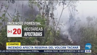 Incendio Pone Riesgo Reserva Volcán Tacaná Chiapas