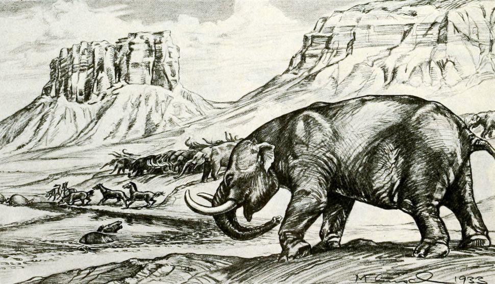 inundacion-revela-200-fosiles-animales-prehistoricos-region-junin-buenos-aires-argentina
