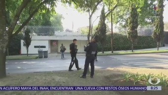 Movilización policiaca para rescatar a un mono sobre Paseo de la Reforma