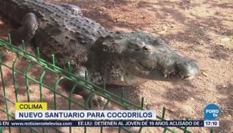 Nuevo Santuario de Cocodrilos 'La Colorada', en Colima