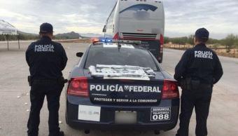 Más de 350 elementos de PF refuerzan seguridad en Campeche