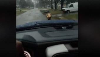 Papá castiga hijo por hacer bullying; lo obliga a correr bajo lluvia