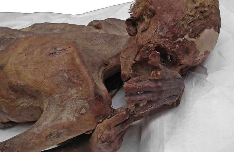 British Museum descubre los primeros tatuajes figurativos del mundo