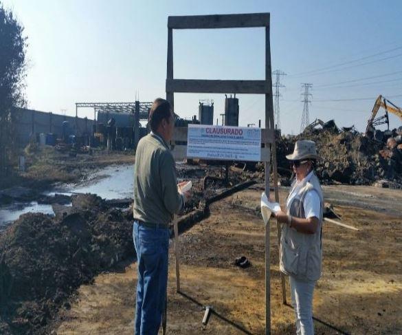 Aseguran más de tres toneladas de carbón vegetal y leña en Oaxaca