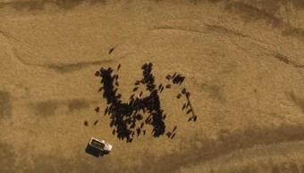 "Satélites captan ""hola"" gigante que formó granjero de Kansas"