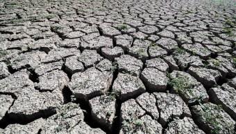 Sequía afecta 14 de los 18 municipios de Sinaloa