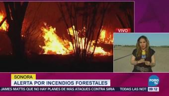 Alerta por incendios forestales en Sonora