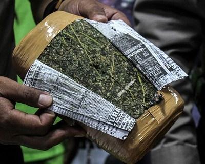 Sedena y Marina incautan más de media tonelada de droga en Jalisco y Colima