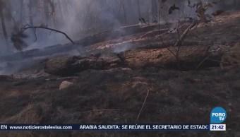 Controlan Incendio Reserva Ecológica Valle Bravo