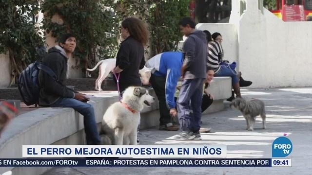 Extra Extra El perro mejora autoestima en niños