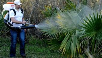 Inicia campaña de fumigación contra dengue, zika y chikungunya en Coahuila